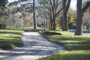 The trail through R Park in Roeland Park began taking shape today.  The ash trees lining the park have already been marked for removal. New trees will be planted at the park next spring.