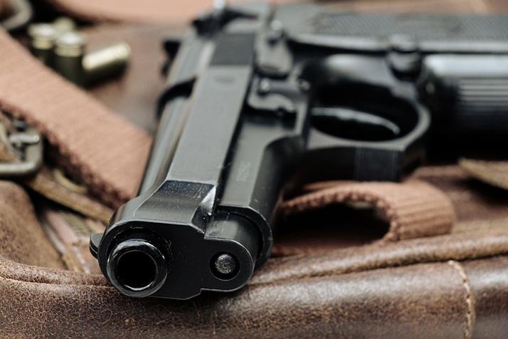 Gun_Sale_14