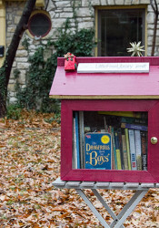 The Chaffees' north Leawood Little Free Library.