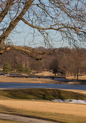 With more than 130 acres of green space and beautiful mature trees, Meadowbrook would make a remarkably attractive site for a public park.