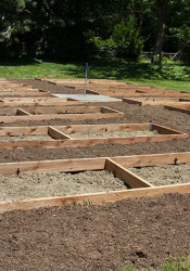 Sixteen community garden plots will be available in north Leawood for the rest of this growing season. The site may expand to 32 plots next year.