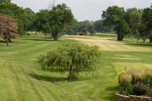 The fate of a plan that would turn 88-acres of Meadowbrook Country Club into a pubic park appears to rest with the Shawnee Mission Board of Education.