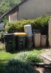 Trash_Cans_here