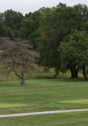 An environmental study found that fears about contamination associated with the use of herbicides and pesticides on the Meadowbrook golf greens were unfounded.