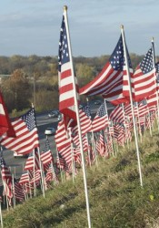 Approximately 750 American Flags greet drivers along I-35 in Merriam.