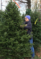 Scouts helped customers pick out trees at St. Michael's this week.