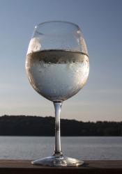 White_Wine_Spritzer