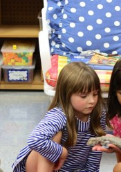The Shawnee Mission School District is seeking full funding for all-day kindergarten as part of its Legislative Platform 2017
