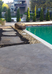 Landscaping by the pool at a recent ReTouch project.