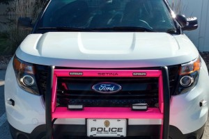 Pink bumpers will mark Roeland Park police cruisers.