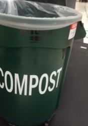 School compost