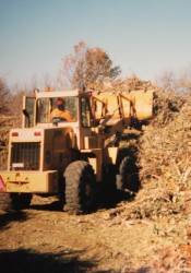 Heavy equipment was used to move tree debris stacked at Porter Park.