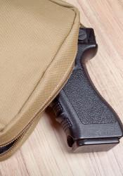 Gun-in-bag